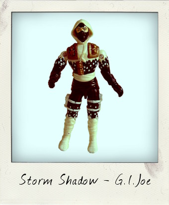 Storm Shadow Ninja Force