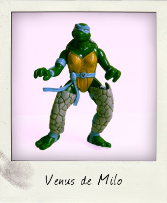 Camo-Armor Turtleflage Venus - NT:TNM