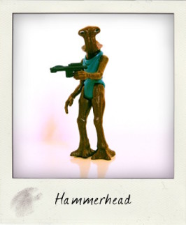 Hammerhead: The Eyes Have It!